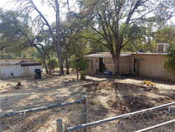 Photo of 15793 31st Avenue, Clearlake, CA 95422 (MLS # LC20212026)