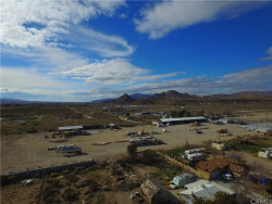Photo of 10290 Haven Rest Road, Lucerne Valley, CA 92356 (MLS # OC19045463)