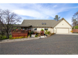 Photo of 3839 Circle J Road, Butte Valley, CA 95965 (MLS # SN19027392)