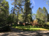 Photo of 4709 Hartley Drive, Forest Ranch, CA 95942 (MLS # SN19093865)