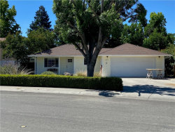 Photo of 1010 Green Street, Willows, CA 95988 (MLS # SN20119512)