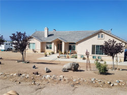 Photo of 21705 Twin Canyon Drive, Nuevo/Lakeview, CA 92567 (MLS # SW18249541)