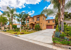Photo of 30063 Swan Point Drive, Canyon Lake, CA 92587 (MLS # SW19097996)