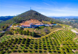 Photo of 29555 Sierra Rojo Lane, Valley Center, CA 92082 (MLS # SW19187815)