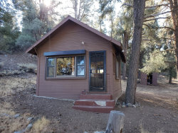 Photo of 7 Frazier Mountain Road, Frazier Park, CA 93222 (MLS # V1-2341)