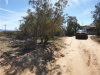 Photo of 58215 Bliss Road, Anza, CA 92539 (MLS # WS19212892)