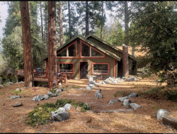 Photo of 9241 Wood Road, Forest Falls, CA 92339 (MLS # WS20062215)