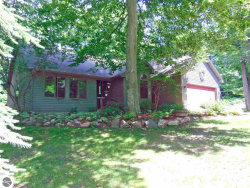Photo of 4437 S Independence Drive, Suttons Bay, MI 49682 (MLS # 1849033)
