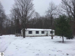 Photo of 105 S Pine Tree Lane, Beulah, MI 49617 (MLS # 1855191)