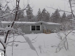 Photo of 1134 Wagon Wheel Lane, Interlochen, MI 49643 (MLS # 1856147)