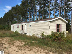 Photo of 652 Phelps, Kalkaska, MI 49646 (MLS # 1867954)