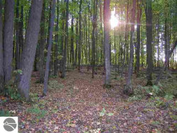 Photo of lot 6 Willow Bend, Bellaire, MI 49615 (MLS # 1726972)