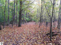 Photo of Parcels C & D Figg Road, Frankfort, MI 49635 (MLS # 1826560)