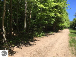 "Photo of Lot ""A"" Wildwood Lane , Lot A, Eastport, MI 49627 (MLS # 1828070)"
