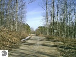 Photo of Lore Road, Eastport, MI 47627 (MLS # 1830022)
