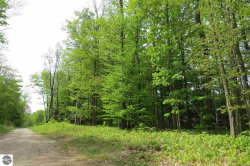 Photo of 000 Tree Tops Lane, Frankfort, MI 49635 (MLS # 1832529)
