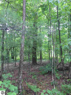 Photo of 00 Aylsworth Road, Thompsonville, MI 49617 (MLS # 1834060)