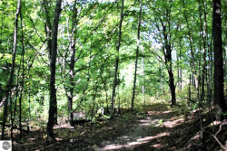 Photo of E Omena Road, Northport, MI 49670 (MLS # 1838800)