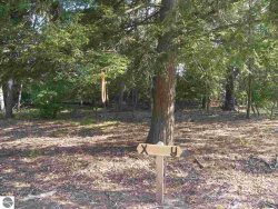Photo of 00 S Glen Lake Road, Glen Arbor, MI 49636 (MLS # 1838888)
