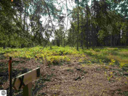 Photo of 00 S Glen Lake Road, Glen Arbor, MI 49636 (MLS # 1838893)