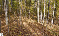 Photo of Parcel 1 Broadway, Suttons Bay, MI 49682 (MLS # 1840386)