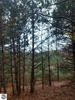 Photo of TBD Maple View Drive, Central Lake, MI 49622 (MLS # 1840652)