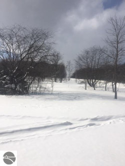 Photo of Meadow View Trail, Bellaire, MI 49615 (MLS # 1842610)