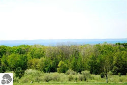 Photo of TBD Farrell Road, Eastport, MI 49627 (MLS # 1843840)