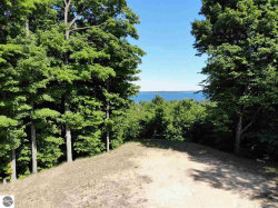 Photo of 5633 S Elm Ridge Drive, Suttons Bay, MI 49682 (MLS # 1845376)