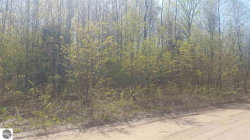 Photo of Lot 2 Plum Valley Road, Rapid City, MI 49676 (MLS # 1845664)