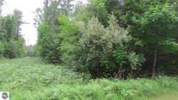 Photo of Blasen Shores Lane , Lot 1, Eastport, MI 49627 (MLS # 1848416)