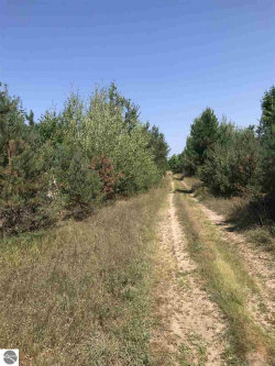 Photo of VL Peterson Road, Mancelona, MI 49659 (MLS # 1852019)