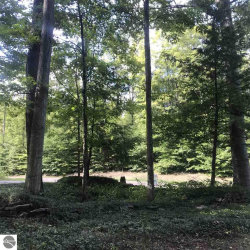 Photo of Lot 12 3 Lakes Club Trail, Mancelona, MI 49659 (MLS # 1852695)