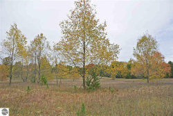 Photo of 13777 North Manistee County Line, Thompsonville, MI 49683 (MLS # 1854299)