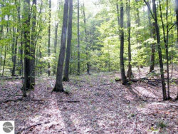 Photo of 40 Acres Stanton Road, Thompsonville, MI 49683 (MLS # 1854905)
