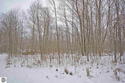 Photo of S Weldon Road, Beulah, MI 49617 (MLS # 1855531)