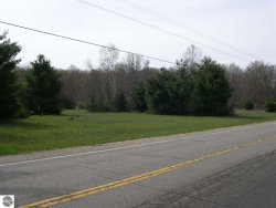 Photo of E Duck Lake Road, Grawn, MI 49637 (MLS # 1855605)
