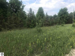 Photo of Parcel F-2 Brundage Road, Interlochen, MI 49643 (MLS # 1856172)