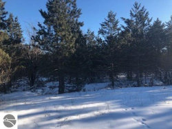 Photo of 11908 Country Acres Drive, Interlochen, MI 49643 (MLS # 1856721)