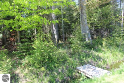 Photo of Lot 266 N Forest Beach Shores, Northport, MI 49670 (MLS # 1862470)