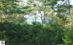 Photo of Lot 171 Ottawa Street, Elk Rapids, MI 49629 (MLS # 1865051)