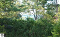 Photo of Lot 175-A Ottawa Street, Elk Rapids, MI 49629 (MLS # 1865055)