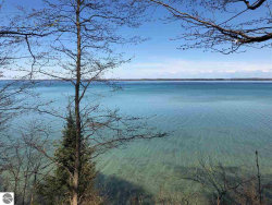 Photo of 3101 S Lee Point Road, Suttons Bay, MI 49682 (MLS # 1865833)