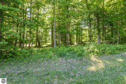 Photo of 003 Heather Ridge Trail, Beulah, MI 49617 (MLS # 1866241)