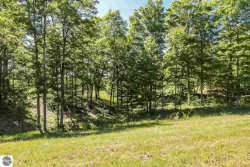 Photo of 0012 Heather Ridge Trail, Beulah, MI 49617 (MLS # 1866247)