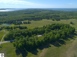 Photo of 0016 Heather Ridge Trail, Beulah, MI 49617 (MLS # 1866249)