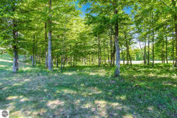 Photo of 0019 Heather Ridge Trail, Beulah, MI 49617 (MLS # 1866254)