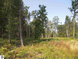 Photo of Z S Glen Lake Road, Glen Arbor, MI 49636 (MLS # 1867802)