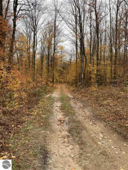 Photo of 00 Rice Road, Kalkaska, MI 49646 (MLS # 1881419)