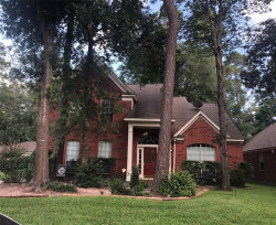 Photo of 10 Windfern Place, The Woodlands, TX 77382 (MLS # 10642809)